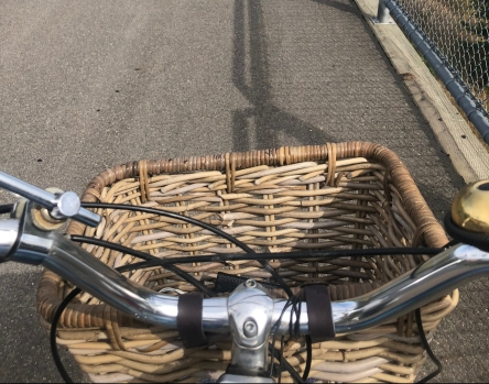 Bike and Basket